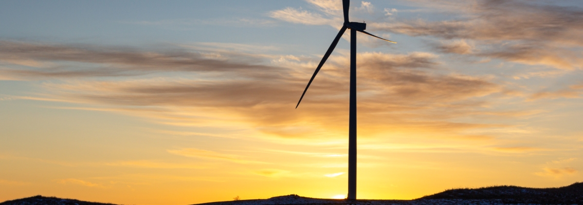DNV GL performs over twenty remote wind turbine inspections globally in times of COVID-19 related-travel restrictions