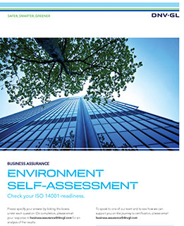 14001 self assessment front cover